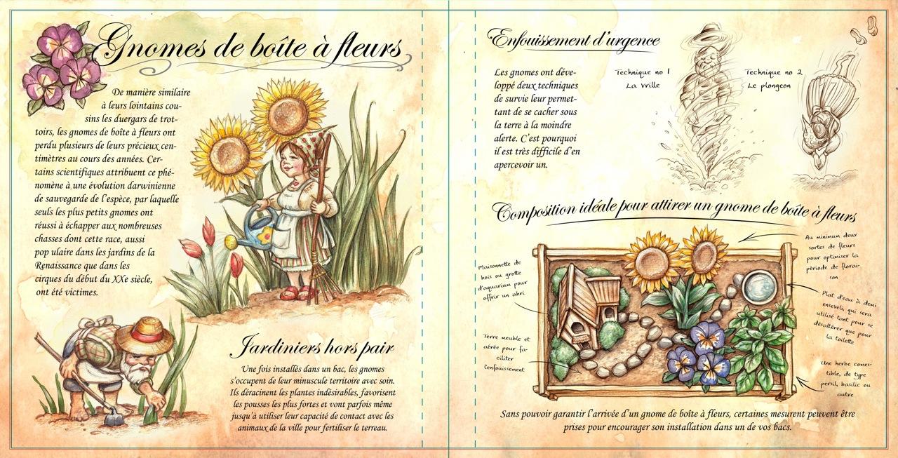 12-gnomes-de-boite-a-fleur