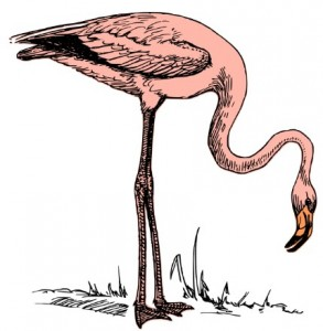 illustration de annares sur openclipart.org